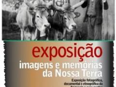 exposicao_covas